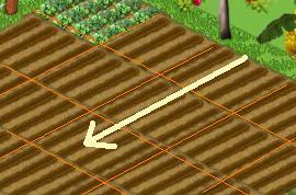 Plant & Plow Direction