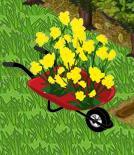Flower Planters 4