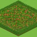 Redtygers Farm